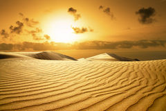 Gold desert. Sunset beach. Royalty Free Stock Photo