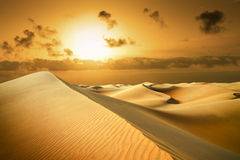 Gold desert. Sunset beach. Stock Image