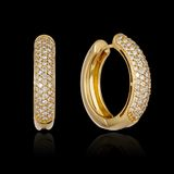 Gold diamond earrings Stock Photo