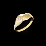 Gold Diamond ring Stock Photo