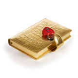 Gold Diary with Padlock Stock Image