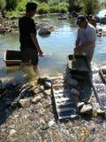 Gold diggers Stock Photos