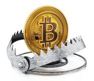 Gold digital coin in ready bear trap. 3D illustration.  Royalty Free Stock Photo