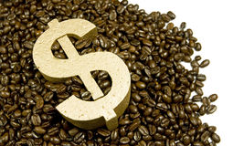 Gold dollar in coffee beans. Gold dollar in a pile of coffee beans spilling onto white background royalty free stock photo