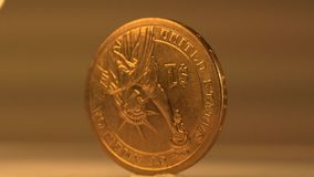 Gold Dollar Coin stock video footage