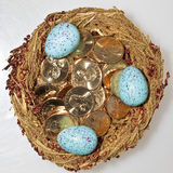 Gold dollar coins in bird's nest with eggs. Metaphor for nest-eggs Stock Photography