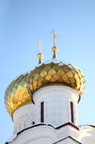 Gold domes Stock Images