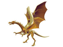 Gold Dragon. Isolated gold dragon Stock Image