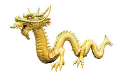 Gold Dragon Royalty Free Stock Photos