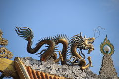 Gold dragon on the china roof. With sky background Royalty Free Stock Image