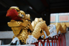 Gold dragon front of the temple Stock Photography
