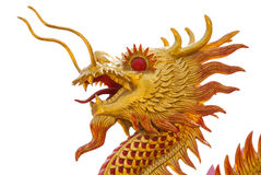 Gold dragon isolate Royalty Free Stock Photos