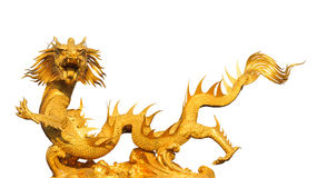 Gold dragon isolated on white background Stock Photo