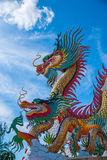 Gold dragon on sky blue. The gold dragon on sky blue Royalty Free Stock Photo