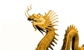 Gold Dragon statue. On white background Royalty Free Stock Images