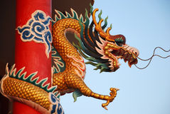 Gold  dragons Stock Photography