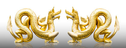 Gold dragons Royalty Free Stock Photo