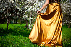 Gold dress Stock Images