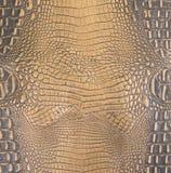 Gold/dunkelbraune prägeartige Alligatorbauch-Leder-Beschaffenheit Stockbilder