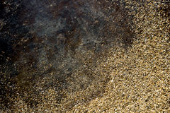 Gold dust on black background. Christmas decoration. Stock Images