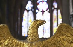 Gold eagle Royalty Free Stock Photography