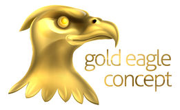 Gold Eagle Head Concept Stockbilder