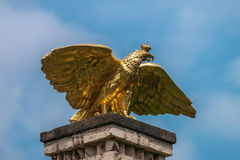 Gold eagle sculpture. In Branitz palace. Germany. Europe stock images