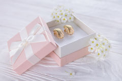 Gold earrings in the gift box Royalty Free Stock Image