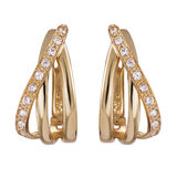 Gold earrings Royalty Free Stock Photos