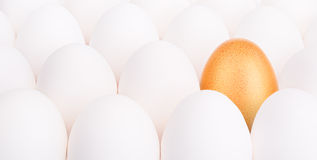 Gold Easter egg between many white eggs Royalty Free Stock Image