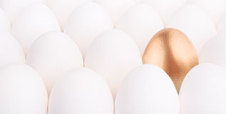 Gold Easter egg between many white eggs Royalty Free Stock Photography