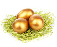 Gold easter eggs in nest isolated Royalty Free Stock Photos