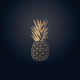 Gold effect pineapple origami vector design. With background Stock Photography