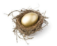 Free Gold Egg Royalty Free Stock Photo - 7488155