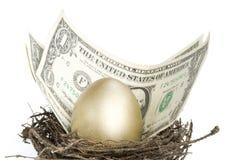 Gold egg Stock Image