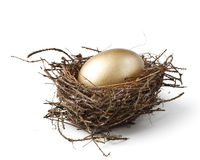 Gold egg royalty free stock photos