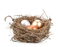 Gold egg. Gold, silver and bronze eggs in a real nest royalty free stock images