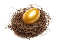 Free Gold Egg Stock Photos - 8408373