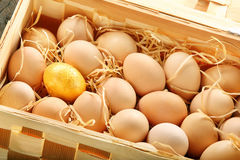 Gold egg in a basket full of eggs Royalty Free Stock Images
