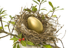 Gold Egg in Bird's Nest Royalty Free Stock Photography