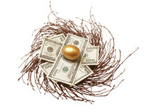 Gold egg & cash Royalty Free Stock Photos