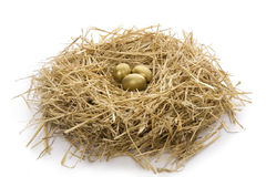 Gold egg in clutch Stock Photography