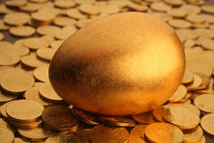 Gold egg and coins Stock Images