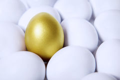 Gold egg in crowds Stock Image