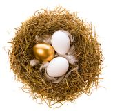 Gold egg for Easter holiday. Three eggs, two white and one gold in a nest from the dried up grass on a white background Royalty Free Stock Photos