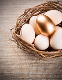 Gold Egg Royalty Free Stock Photography
