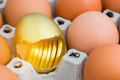 Gold egg with gold coin Stock Image