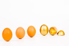 Gold egg and gold coin on white background Royalty Free Stock Photos
