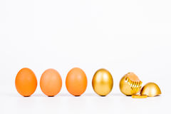 Gold egg and gold coin on white background Royalty Free Stock Photography