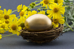 Gold egg in nest surrounded by spring flowers Royalty Free Stock Photo